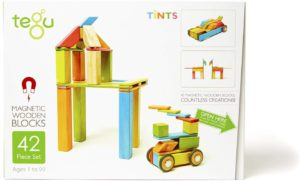 Tegu magnetic wooden blocks.